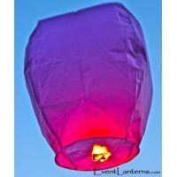 Purple Lanterns