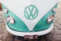 1266 Pretty Cars, Melbourne Victoria, Volkswagen Logo, Summer Wedding, Bridal, Cats, Gatos, Cat, Kitty