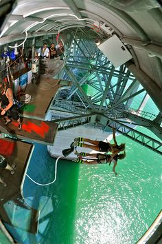 Bungy Jumping, Auckland Bridge, New Zealand ** Tick Oh The Places You'll Go, Places To Travel, Travel Destinations, Dream Vacations, Vacation Spots, Bungee Jumping, Above The Clouds, The Beautiful Country, Adventure Is Out There