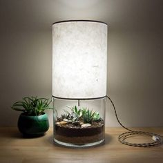 Need to add this to my terrarium collection! Large Round Terrarium/Display Table Lamp, with Handmade Paper Lampshade