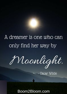 a dreamer... in the moonlight