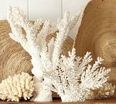 Faux Prickly Bush Coral | Pottery Barn