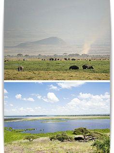 Amboseli National Park - Kenya via I-Ads