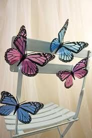 Butterfly  chair decor