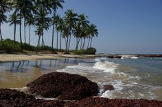 Konkan  is blessed with one of the longest coastlines in India, and has some untouched and heavenly beach locations that are a delight unto themselves. You will find plenty of isolated coves with long, clean uninterrupted stretches of golden sand that are just the right distance away to give you your privacy, while at the same time allowing you access to nearby towns and their convenience.