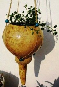 .perfect for herbs in the kitchen window