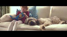Czego szukasz w swoich marzeniach? | film 90 sek. | Pies