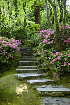 Garden Pathway by Brian Jannsen Garden Pathway Garden Stairs, Garden Arbor, Garden Paths, Balcony Garden, Beautiful Landscapes, Beautiful Gardens, Garden Cottage, Forest Cottage, Dream Garden