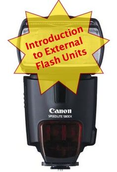 An Introduction to External Flash Units - Digital Photography School