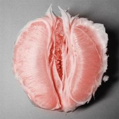 29 Non-Vagina Things That Look Disturbingly Like Vaginas