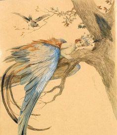 Feather Fairy - sergey sergeevich 1912