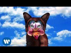 Galantis - No Money (2016, audio only)