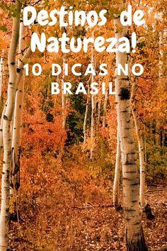 Conheça nossa seleção de 10 desinos no Brasil, para você curtir pós pandemia e aproveitar a primavera. #destinosdenatureza #brasil #pospandemia #pinterest #conhecendoobraisl #ecoturismo #dicasdeviagem #viagem