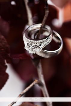 Wedding ring photo from LAM Photography