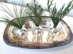 Pin It Where to put those little sprigs and twigs I keep bringing in the house? The fresh scent of evergreens... I took the tops (th...