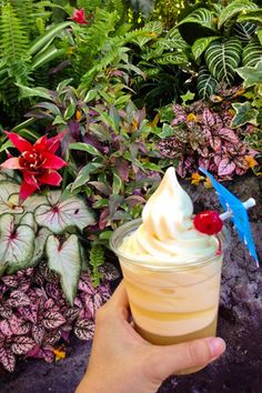Dole Whip at the Enchanted Tiki Room | 39 of the Best Disneyland Food