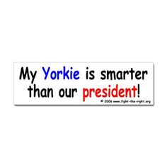 And...thats saying a lot bc my yorkies an idiot lol
