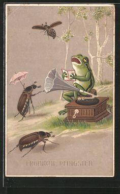old postcard: AK Frosch singt zum Grammophon, Maikäfer hören zu, Pfingstgrüße