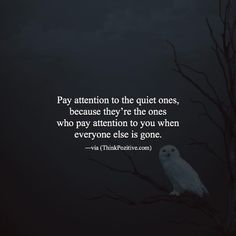 Positive Quotes : QUOTATION – Image : Quotes Of the day – Description Pay Attention To The Quiet Ones. Sharing is Power – Don't forget to share this quote ! Amazing Quotes, Best Quotes, Famous Quotes, Daily Quotes, Life Quotes, Quiet Quotes, Positive Vibes Quotes, The Quiet Ones, Introvert Quotes