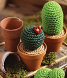 Ravelry: Crochet Cactus pattern by Katy Yellen