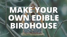 Create a beautiful birdhouse that will keep the birds happy and well-fed.