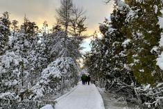 Enjoy a wintry getaway on the 'quiet side' of Door County, Wis. - StarTribune.com