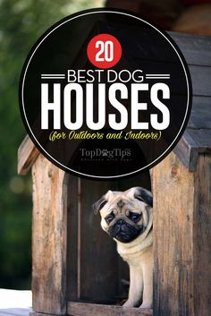 The Best Dog Houses for Outdoors and Indoors. A dog needs his own house for many different reasons, no least of which is because a dog house keeps him warm in the winter, cool in the summer, and dry in rain. Moreover, the best dog houses for outdoors or indoors provide shelter, and the feeling of safety and security for pets, as well as satisfy their innate feeling to den and hide away. #doghouse #dogs #houses #best #reviews #top #list