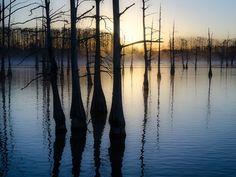 Bayou Sunrise via Hot Times, Cool Places #sunrise