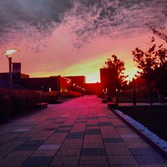 SUNY Purchase in its sunset.