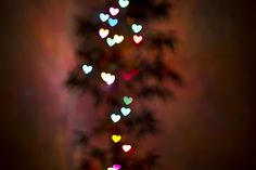 Shaped Bokeh: This totally works and I totally going to use that for our Christmas cards