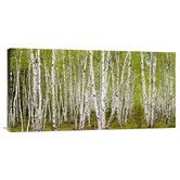 Found it at AllModern - 'White Birch Grove with Spring Foliage, Canada' by Don Johnston Photographic Print on Canvas