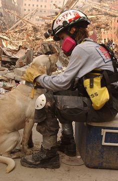 """""""If these dogs only knew what a difference they make. Certainly, there's nothing that can replace the precision of a dog's nose—and absolutely nothing that can replace a dog's heart."""" — Bob Sessions, rescue worker, FEMA"""