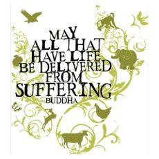 """""""Que todo aquello que tiene vida sea liberado del sufrimiento"""" Buddha."""