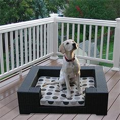 i am dreaming of outfitting my patio. wouldn't this be the perfect addition?