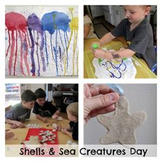 collage of shell and sea creature activities