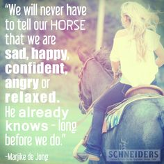 Horses- they know you better than you know yourself.