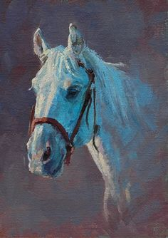 2014 Horse portrait 1 by Jim Clements Oil ~ 5 x 7