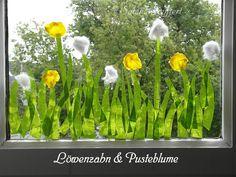 Blumenwiese-Pusteblumen an der Fenterscheibe
