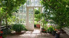 Jardin d'hiver   Accessoires de décoration d'intérieur chez Westwing