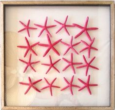 Large Star Fish Tropical Pink - 24 X 24 Framed Sea Life