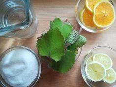 Domácí sirup z rýmovníku - recept krok po kroku - Bylinkovo.cz Dieta Detox, Pesto, Cantaloupe, Fruit, Health, Desserts, Feng Shui, Food, Syrup