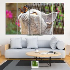 Cat with Colorful Butterfly, Multi Panel Framed Canvas Set, Cute Kitty Home Wall Art, Grey Kitten HD Print Decor, Pet Animal Decoration Gift by GTCreativeArt on Etsy Bird Wall Art, Home Wall Art, Framed Canvas, Canvas Wall Art, Forest Decor, Grey Kitten, Fairy Tree, Custom Canvas Prints, Animal Decor