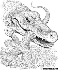 anaconda coloring page coloring pages snake23 reptile snake
