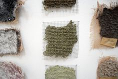 material research by Nacho Carbonell by wefindwildness, via Flickr