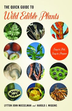 """Read """"The Quick Guide to Wild Edible Plants Easy to Pick, Easy to Prepare"""" by Lytton John Musselman available from Rakuten Kobo. A recent rise in the popularity of urban farming, farmers' markets, and foraging from nature means more people are looki. Edible Wild Plants, Plant Information, Living Off The Land, Wild Edibles, Gardening, Healing Herbs, Urban Farming, Edible Flowers, Survival Tips"""