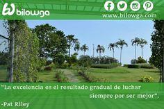 """""""La excelencia es el resultado gradual de luchar siempre por ser mejor"""".  -Pat Riley #bilowga #frases #motivacion #frasedeldia #felizViernes #fit #fitness Síguenos en nuestras redes sociales! www.facebook.com/bilowga www.twitter.com/bilowga www.instagram.com/bilowga www.google.com/+bilowga www.pinterest.com/bilowga"""