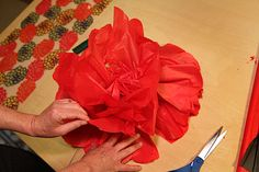 A Giant Magical Paper Poppy Garden? I know–what a strange Tangled Nest post. But somehow I volunteered to make the poppies for the set of Claire's school production of The Magical Lan… Tissue Flowers, Crepe Paper Flowers, Big Flowers, Poppy Flowers, Poppy Costume, Flower Costume, Poppy Flower Garden, Poppy Drawing, Giant Butterfly