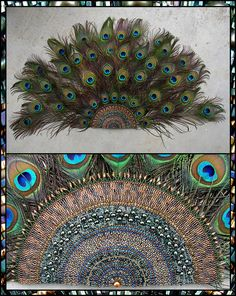 As the images in this gallery illustrate, I have settled on five major techniques and styles over the years: Wing-bracelets made from size 15 seed beads using Peyote stitch that are heavily infl. Peacock Quilt, Peacock Decor, Peacock Crafts, Ganesh Chaturthi Decoration, Perfect Peacock, Janmashtami Decoration, Ganpati Decoration At Home, Ganapati Decoration, Alternative Bouquet