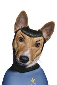 Famous Faces by Takkoda : Spok For all the Sci Fi dog fans! - take that Sheldon!