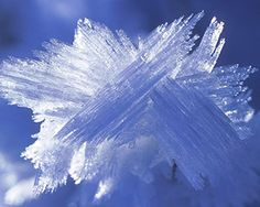 Hoar frost crystals (Image © Image Broker/Rex Features)